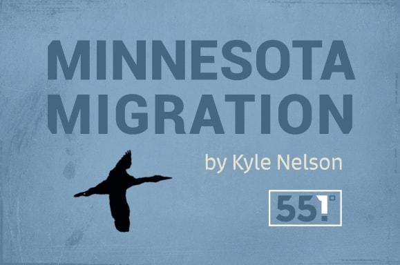 Minneosta-Migration2
